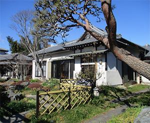 花の寺 常楽寺