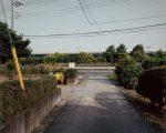 公開日:2020/9/24 撮影地:羽生市