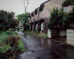 公開日:2020/10/13 撮影地:前橋市