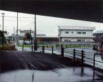 公開日:2020/11/14 撮影地:前橋市